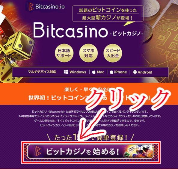 ビットカジノ登録画像1